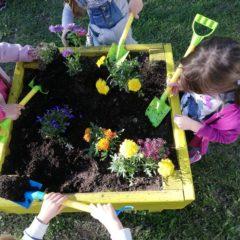 Eko domaćinstvo: novi vrtni kamp!